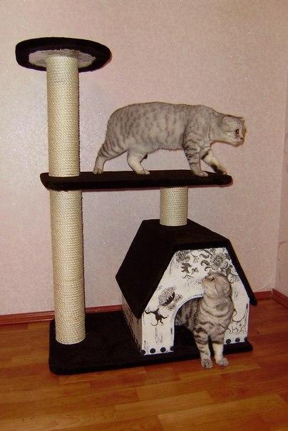 Игровой центр для кошек своими руками 58